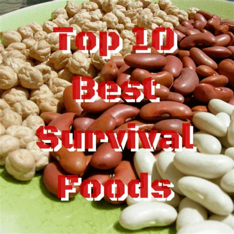 10 best foods top 10 best survival foods