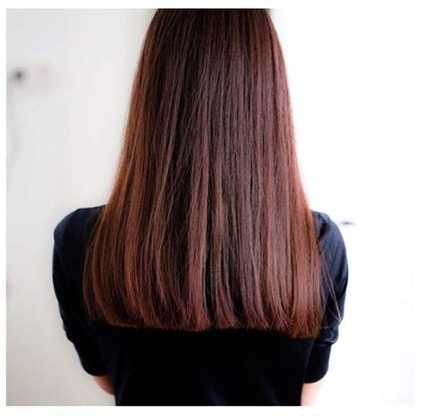 mahogany hair color pictures 25 best ideas about mahogany brown on
