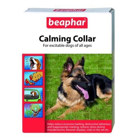 calming collar for dogs beaphar calming collar for dogs