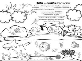 abiotic pages coloring pages