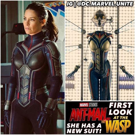 best marvel movies best 25 upcoming marvel movies ideas on pinterest next