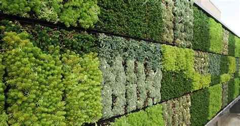 giardini ornamentali la fertirrigazione come nutrire le piante attraverso l