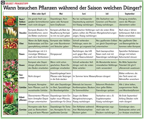 garten jahreskalender wann d 252 ngen kalender g 228 rten und pflanzen