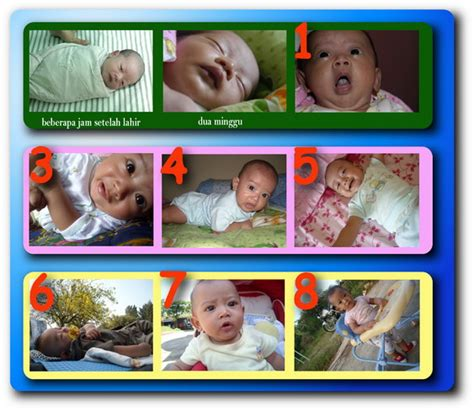 Overall Bayi Hello 8 10 Bulan 3936bb foto pertumbuhan bayi ksatriapertama