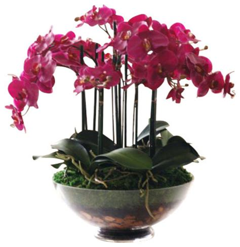 phalaenopsis orchid glass flower arrangement traditional