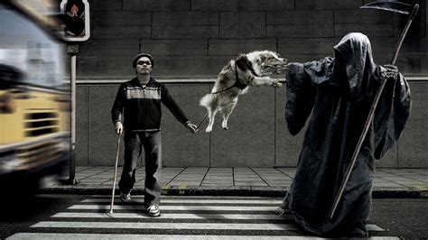 funny death death dogs funny twitter cover twitter background