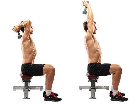 10 of the most effective tricep and bicep workouts with