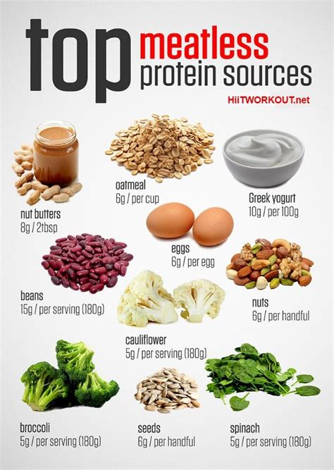 food the best nutrition for your four legged friend books 17 best ideas about vegetarian protein foods on