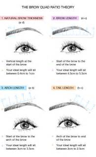 How To Arch Eyebrows At Home how to shape your brows at home
