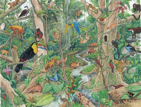 imagenes animales jungla hermosas im 225 genes para descargar gratis de animales de la