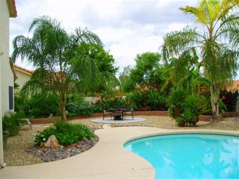 Tropical Backyard Pictures by Arizona Tropical Style Backyard Landscaping In Tucson