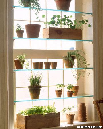 window plant shelves for the home