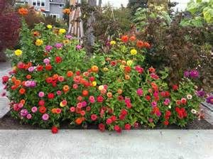 small flower garden ideas 7 awesome small flower garden ideas for your home page 2