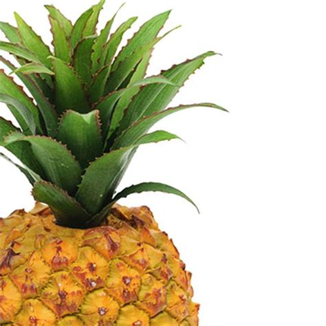 artificial pineapple plastic decorative fake fruit ebay