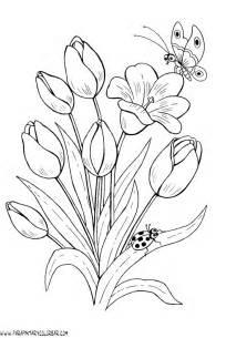 imagenes de tulipanes para dibujar imagui