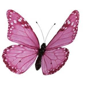 dekoration schmetterlinge deko deko schmetterling pink 50 cm dekoration bei