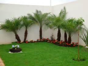 dicas simples para jardins residenciais 99 graus