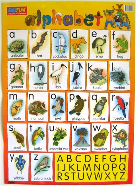 alphabet australia gift log australia unique gift shop selling