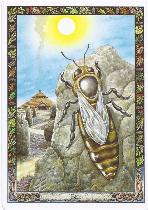 the druid animal oracle the bee from the druid animal oracle illustrated by will worthington bees are considered