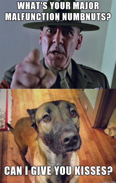 German Shepherd Memes - german shepherd military meme www pixshark com images