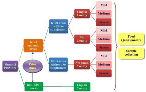 design effect stratified random sle this diagram shows the study design including the