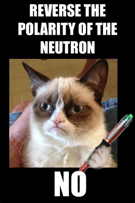 Doctor Who Cat Meme - doctor grumpy cat by atlantihero kyoxei on deviantart