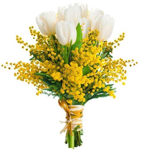festa delle donne fiori mazzi di fiori e bouquets di mimosa per festa della donna