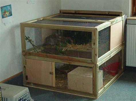 kaninchenstall innen kaninchen zwergkaninchen info gehege