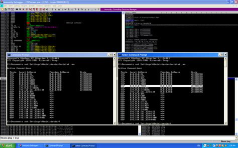 kali linux buffer overflow tutorial linux litele