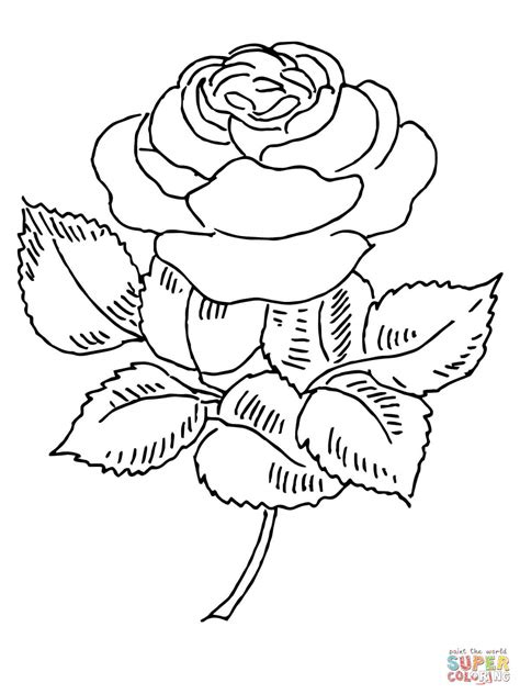 rose steunk coloring pages coloring pages