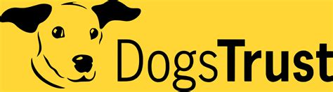 dogs trust our pet healthcare services animal house vets bristol