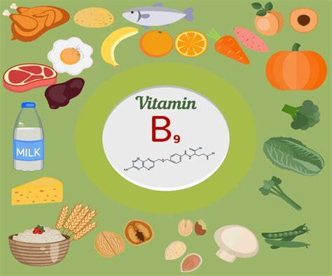 alimentos que contienen vitaminas b12 10 alimentos m 225 s ricos en vitamina b9 o 193 cido f 243 lico