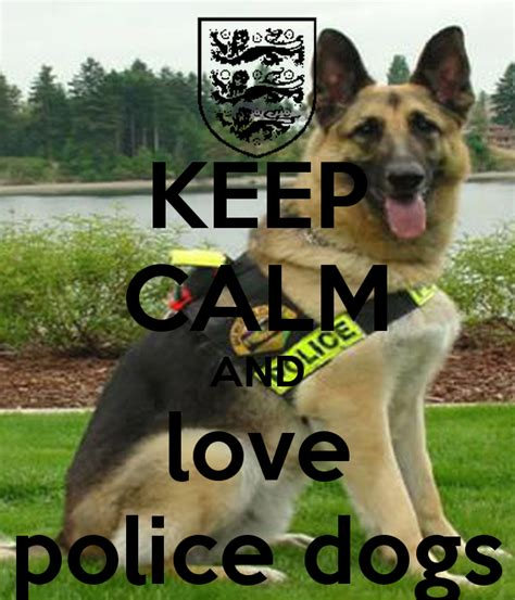 Shoo K9 Teddy Dogs 710ml keep calm and dogs poster keep