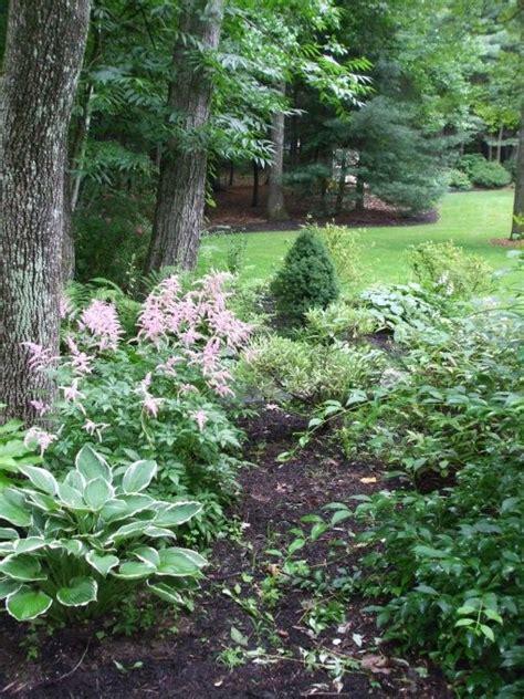 78 best images about shade gardens on pinterest shade garden hosta gardens and backyard ideas