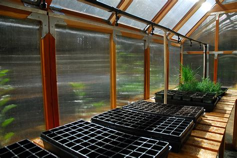 propagation bench greenhouse irrigation the propagation bench curbstone valley