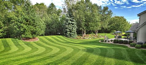 residential and commercial lawn mowing lawn and