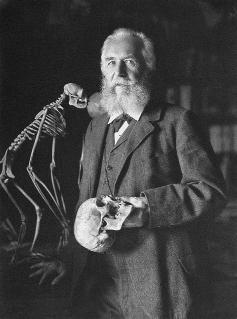 Ernst Haeckel and the Unity of Culture – The Public Domain