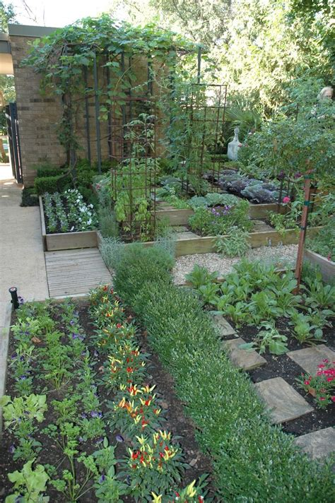 edible backyard plants 25 best ideas about tomato cages on pinterest staking