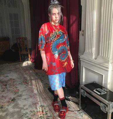billie eilish real name billie eilish family in detail mother father and older