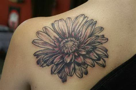 gerber daisy tattoo gerber the orchid snatcher 5476283 171 top tattoos ideas