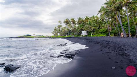 picture photo black sand beach at punaluu big island punaluu black sand beach hawaii turtles black sand