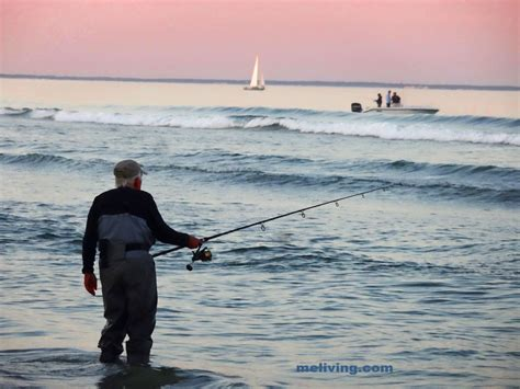 charter boat fishing maine maine fishing freshwater saltwater guides charter boats
