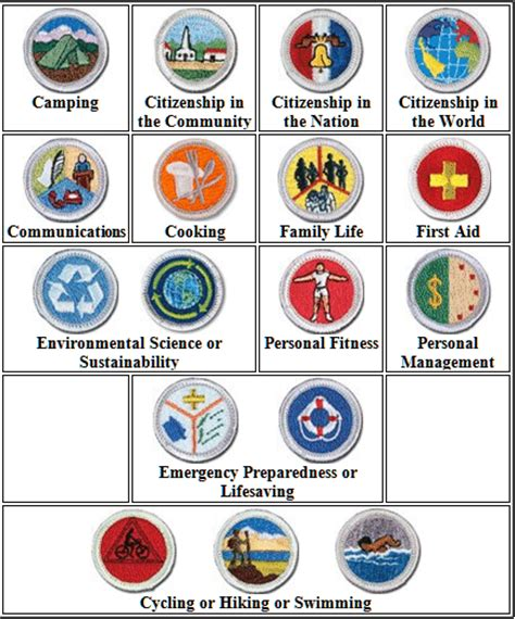 names of all eagle scouts merit badges boy scout troop 159 our of