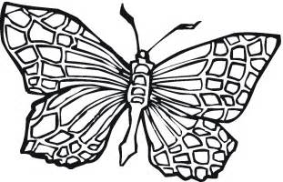 coloring pages of butterflies free printable butterfly coloring pages for