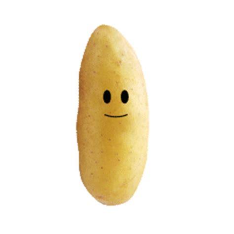 pomme de si鑒e social informations sur les pommes de terre grelots the
