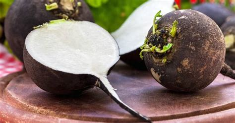 New And Innovative At And Radish by What Is A Black Radish A Primer On How To Eat This Tasty