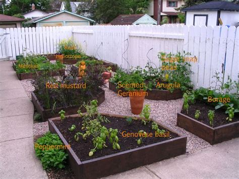 Pea Gravel Garden Ideas 41 Best Images About Gravel Garden On Gardens Stepping Stones And Side Yards