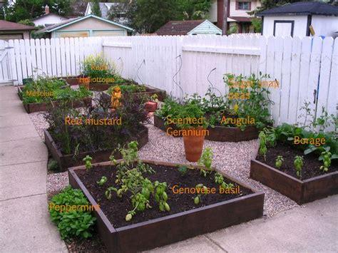Pea Gravel Backyard Ideas by 41 Best Gravel Garden Images On Gravel Garden