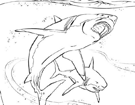 Free Coloring Pages Of Sun Planet Animal Planet Coloring Pages