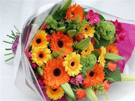 fiori freschi fiori freschi regalare fiori